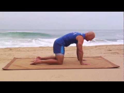 Lower Back Pain Injury Rehab Therapy Exercises to Stop Back Pain in the Lumbar Spine Region