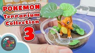 Pokemon Terrarium Collection 3 đủ bộ Pokemon cơ bản với Charmander ToyStation 250