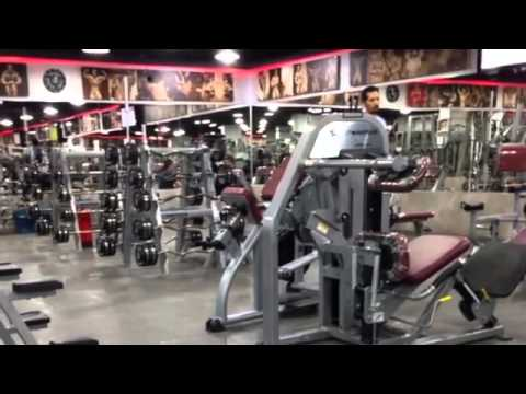 Titanium Shark Gym