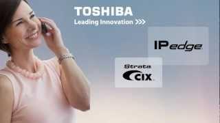 telecommunications toshiba ip edge/
