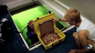 Scuba-Diving Pizza Delivery Man | World's Strangest