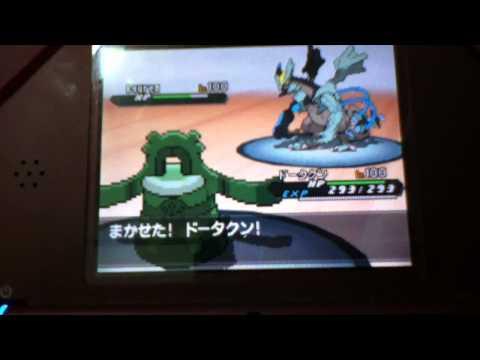 Pokemon Huyền thoại Vs pokemon thường