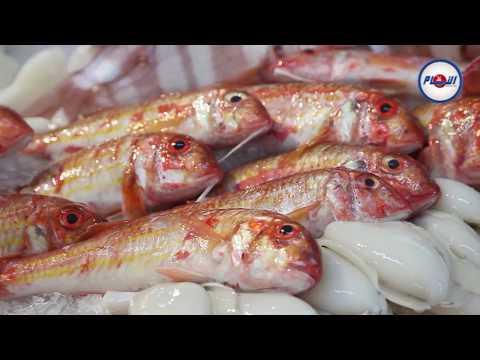 أسعار السمك تلتهب في رمضان
