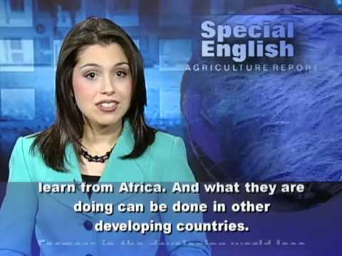 Luyện nghe tiếng Anh qua video VOA-Có phụ đề tiếng anh-Bài 2