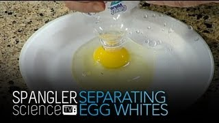Separating Egg Whites And Egg Yolks Cool Science