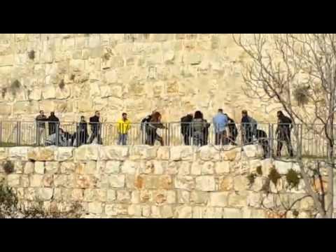 فيديو- ضرب بالعصي وركل لمنفذي عملية القدس قبل استشهادهما