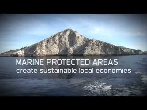 Marine Protected Areas in the Mediterranean: an investment for the future