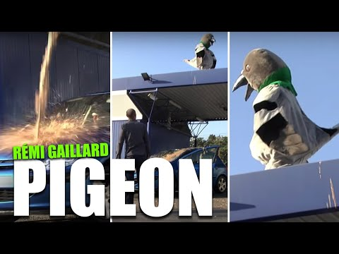 Pigeon (Rémi Gaillard) - Movie scene