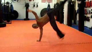 Capoeira Sequence With Au Malandro