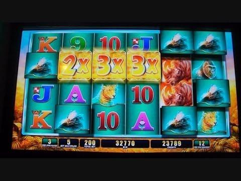 Raging Rhino HANDPAY JACKPOT!!!!!!! Slot Machine Buffalo ...