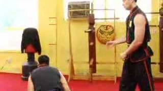Wing Tsun(Wing Chun) yere düşürme