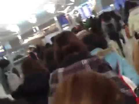 Các thành viên nhóm Super Junior trên đường ra sân bay dự đêm diễn 15/3 tại VN