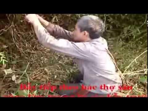 Cách săn gà rừng - Sơn La
