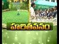 Govt art college Develops Botanical Garden for Students | Rajahmundry
