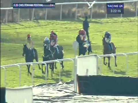 Vidéo de la course PMU THE QUEEN MOTHER CHAMPION STEEPLE CHASE