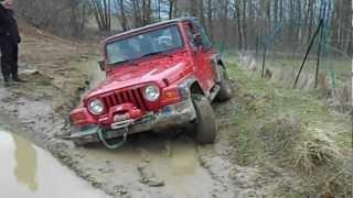 Jeep Wrangler Dumm gelaufen. videos