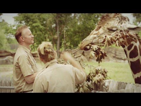 Morgan Spurlock Inside Man Zoos Trailer