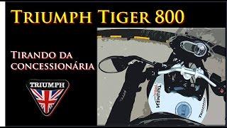 Triumph Tiger 800 Tirando Da Concessionária Primeiros