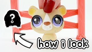 LPS  - HOW I LOOK IN REAL LIFE!! FAN MAIL