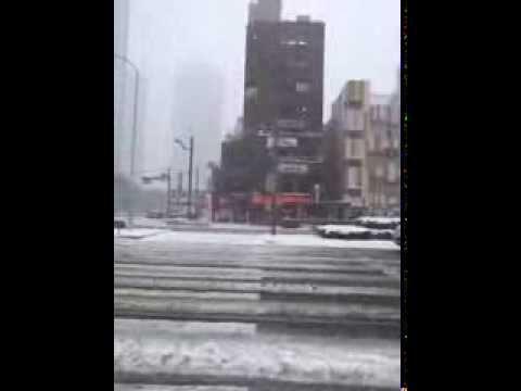 RARE HEAVY SNOWFALL HITS TOKYO!!!