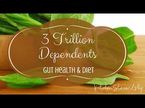 Paleo, Gut Health & Diet {KS Connect *Plus* 3rd edition}