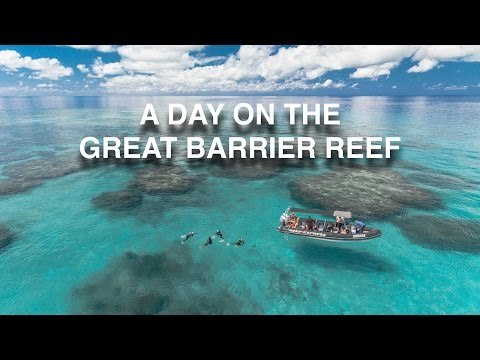 Great Barrier Reef From Drone