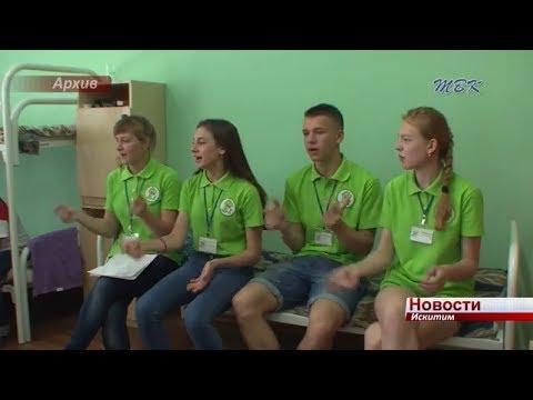 Более 16 млн. рублей в Искитиме израсходовано на оздоровление детей и подростков