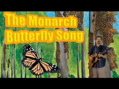 Monarch butterfly song (English version) sung by Lucas Miller feat. illustrations by Carol M Wilcox