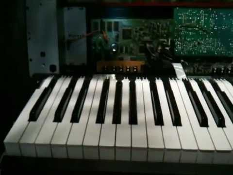 How to Repair RD-500 Keyboard Hammers - Other Roland Keyboards as Well
