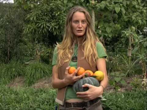 Permaculture Principles in a Polyculture Orchard