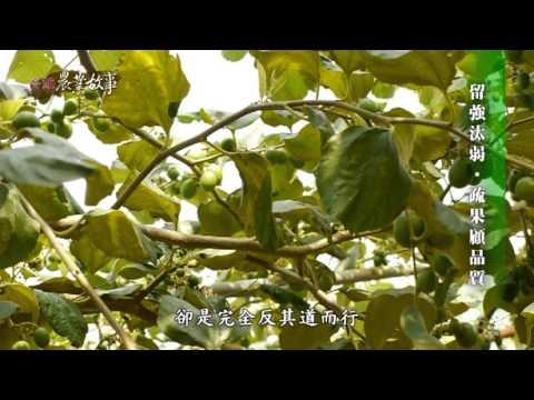 高雄農業故事館-棗子(影片長度:15分49秒)