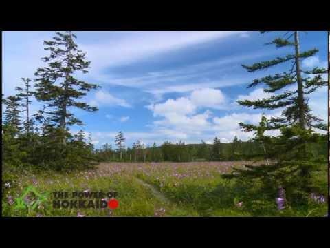 【The Power of Hokkaido】hokkaido1_four seasons
