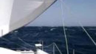 Catamaran Sailing In 40 Knots Red Sea