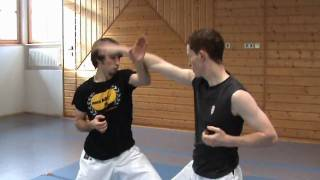 AWESOME Karate Show Fight