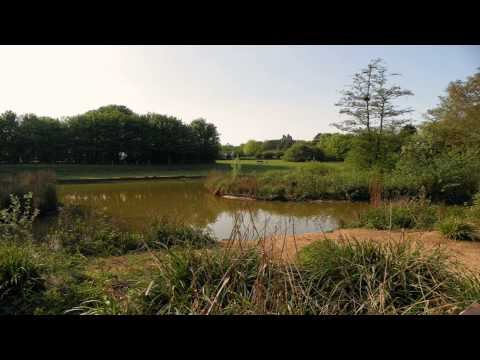 Fairlands Valley Park Oxford Oxfordshire