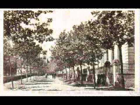 Isola D'Elba Raccolta Cartoline Antiche