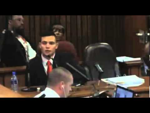 Oscar Pistorius Trial. Day 3. Part 3