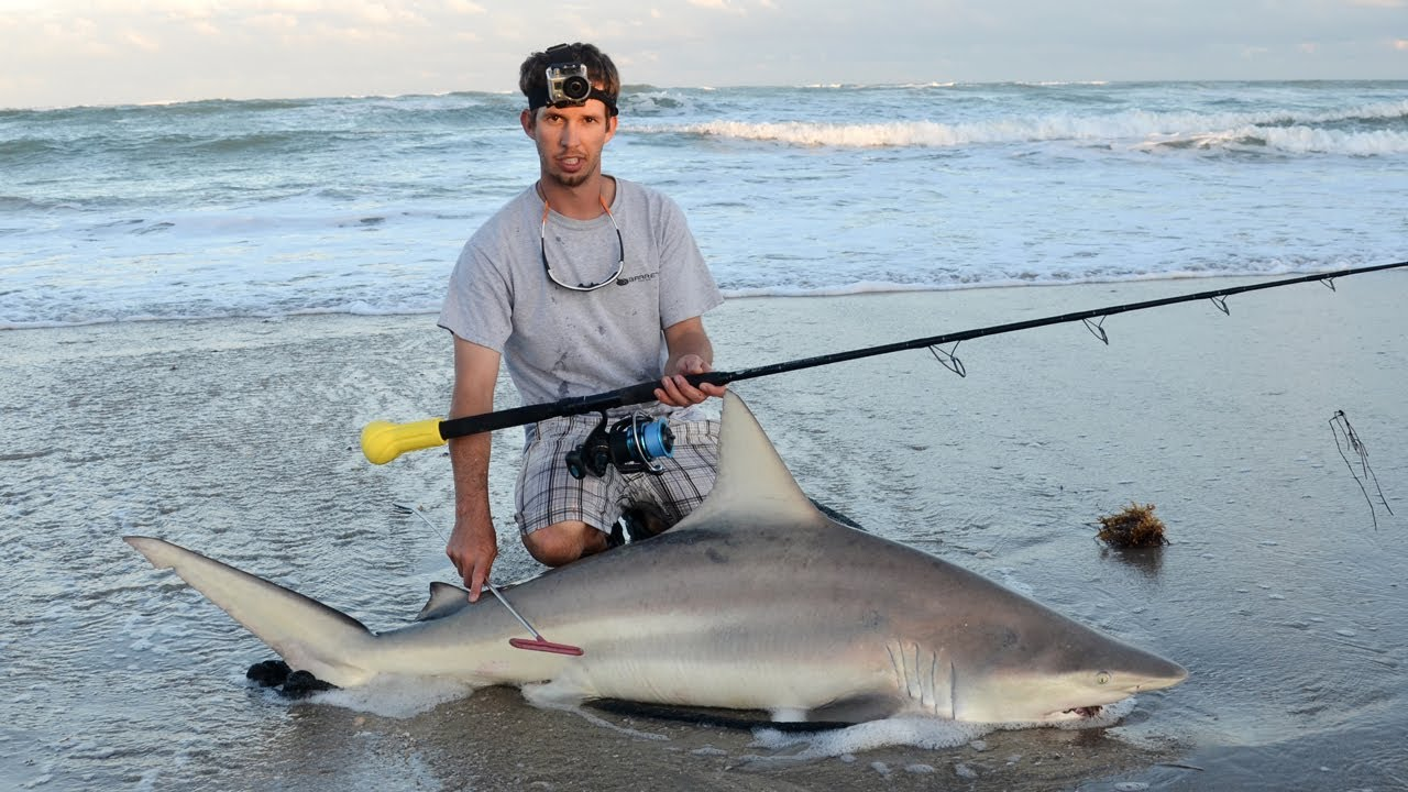 Sebastian inlet shark fishing youtube for Where to buy fishing license near me