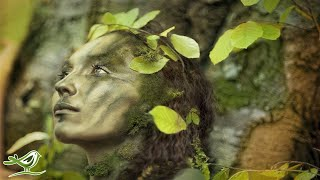 Relaxing Celtic Music: Beautiful Music, Relaxing Music, Flute Music, Meditation Music ?91