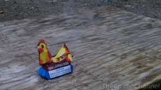 [The BEST firework EVER - Hen Laying Egg     (Banned in many ...]