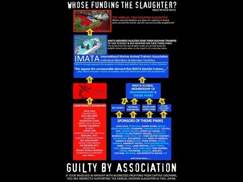 Taiji Dolphin Activism FAQ and Q&A: How Are Marine Parks Involved? Can't Activists Cut Nets? Etc.
