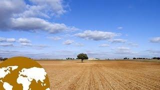 Conocimiento del medio: El paisaje de la llanura