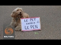 Dogs join fight against far-right ahead of French election