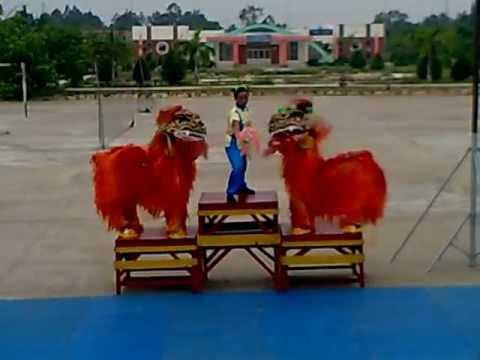 KỶ LỤC GUINNESS VIỆT NAM (Đội múa sư tử nữ duy nhất Việt Nam).mp4
