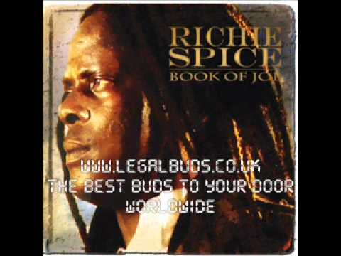 My Life - Richie Spice - Book Of Job - 2011 NEW REGGAE ALBUM