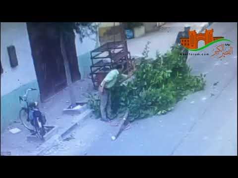 جريمة بيئية في وضح النهار