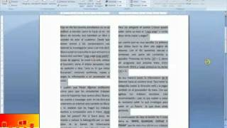 LECCION 21: DIVISION DE COLUMNAS EN EL DOCUMENTO DE WORD