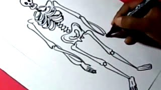 How to draw SKELETON DRAWING for kids step by step