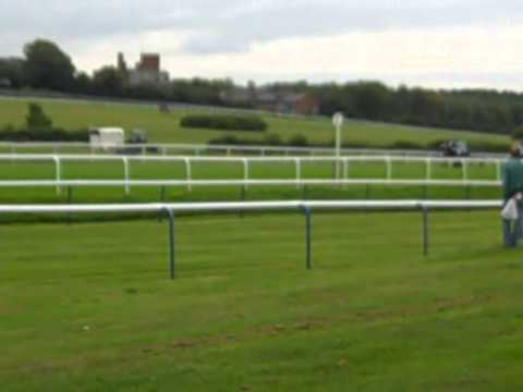 Leicester Races on A Tuesday afternoon in September another Winner Heads for the post