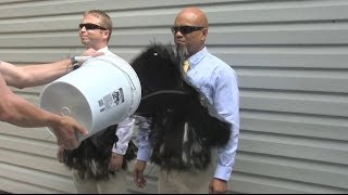 The SECOND Official Ultra-Ever Dry Video - Superhydrophobic coating - Repels almost any liquid!
